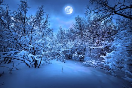 winter-moon